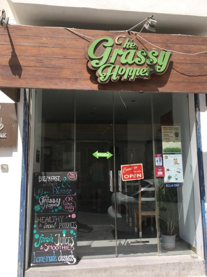Grassy hopper